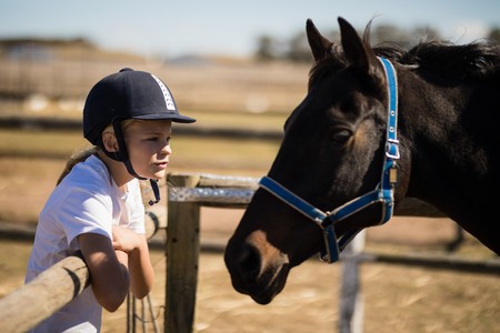 Girl staring at the brown horse in the ranch on a sunny day