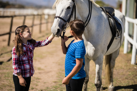 Siblings standing with white horse in the ranch on a sunny day Stock Photo