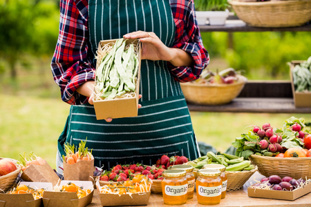 large group of business people: Midsection of young woman selling organic vegetables while standing at farm