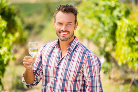 single word: Portrait of handsome man holding wineglass at vineyard on sunny day Stock Photo
