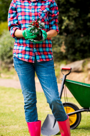 Midsection of woman holding potted plant while standing at lawn