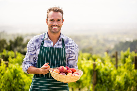 Portrait of smiling young man holding apple basket at vineyard