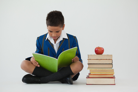Attentive schoolboy studying against white background Stock Photo