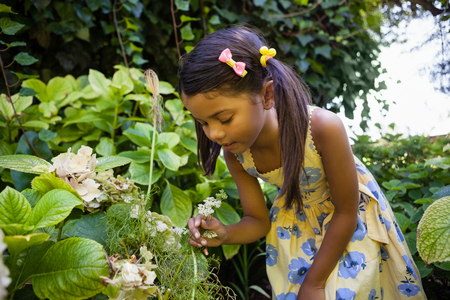 Girl looking at fresh flowers in backyard Stock Photo