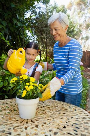 Lächelnde ältere Frau , die durch die Enkelin steht , blühende gelbe Blumen auf Tabelle im Hinterhof Standard-Bild - 82494093