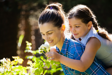 carrying: Daughter smelling rose with mother while enjoying piggyback ride at backyard Stock Photo