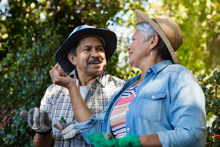 Couple interacting with each other while gardening in the garden on a sunny day