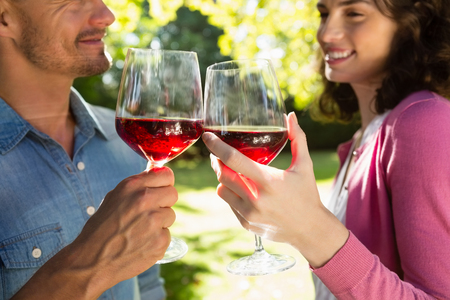Romantic couple toasting glass of wine in park on a sunny day