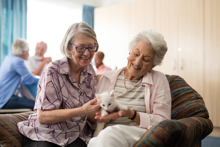 Smiling female senior friends looking at kitten while sitting on arm chair in nursing home 免版税图像