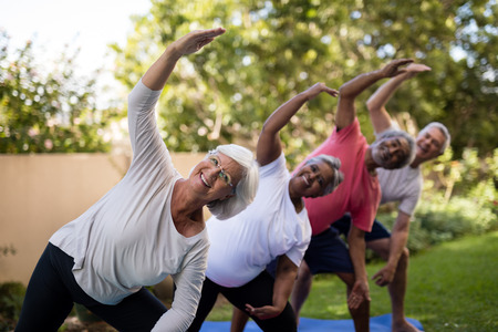 Portrait of smiling senior friends exercising with arms raised on mats at park
