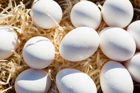 Close-up of eggs in wicker basket on a sunny day