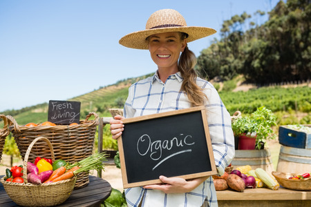 Portrait of happy woman holding slate with text in vineyard on a sunny day Stock Photo