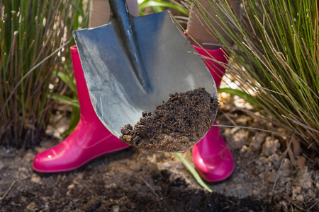 Low section of woman digging soil with shovel in garden on a sunny day