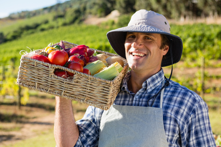Portrait of happy farmer holding a basket of fresh vegetables in vineyard