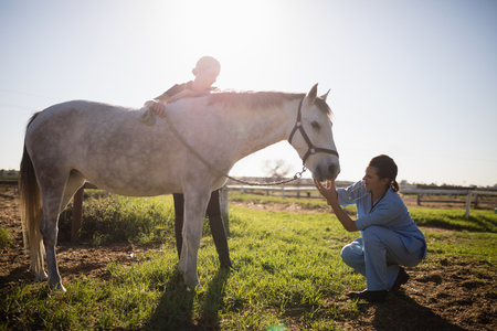 Woman looking at vet examining horse in barn during sunny day Stock Photo