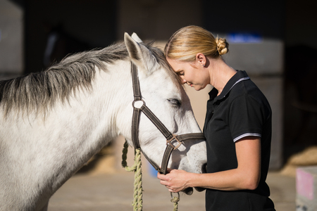 Vista lateral del caballo amante jinete hembra en el granero