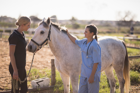 Female jockey talking to vet while standing by horse at barn