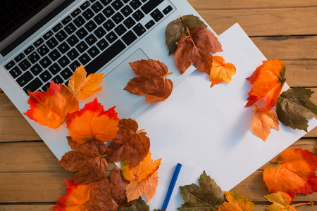 bodegones: Overhead view of autumn leaves with paper by laptop on wooden table