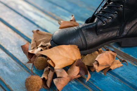Close up of black shoe by dried leaves on wooden table Stock Photo