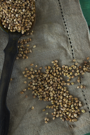 Close-up of coriander seeds on cloth Banque d'images