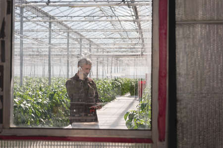 Man talking on mobile phone while holding digital tablet in greenhouse LANG_EVOIMAGES