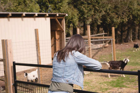 Woman looking at the goats in ranch
