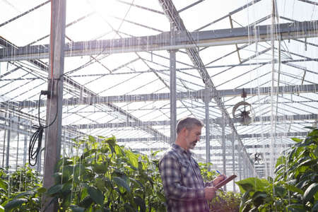 Man writing on clipboard while examining a plant in greenhouse