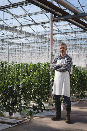 Portrait of man standing with arms crossed in greenhouse