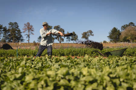 arboles frondosos: Farmer working in field on a sunny day LANG_EVOIMAGES