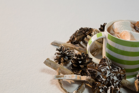 Close-up of chocolate drink and pines cones on white background