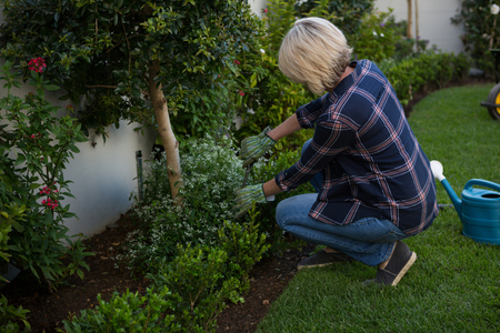Woman pruning plants in garden on a sunny day