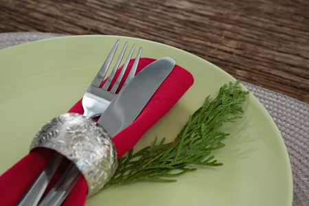 napkin ring: Close-up of cutlery with napkin and fern in a plate Stock Photo
