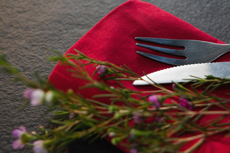 Close-up of cutlery and flora on red napkin Banque d'images
