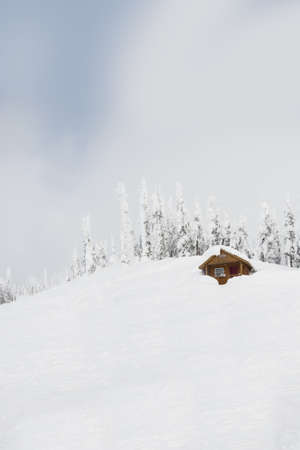 Beautiful winter landscape with snow covered trees and cottage at dusk LANG_EVOIMAGES