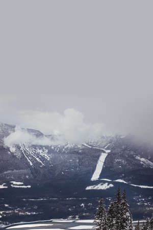 Aerial view of beautiful snow covered mountains and trees on a cloudy day LANG_EVOIMAGES