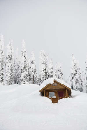 Beautiful winter landscape with wooden hut and snow covered trees LANG_EVOIMAGES