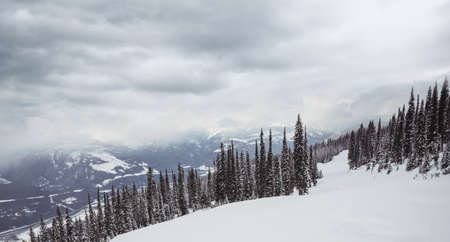 Beautiful snow covered mountains and fir tree on a cloudy day LANG_EVOIMAGES
