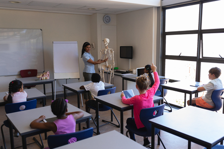 Vista frontale dell'insegnante femminile che spiega le parti dello scheletro agli scolari nell'aula della scuola elementare