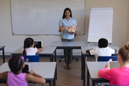 Front view of female teacher explaining anatomy of body parts in classroom of elementary school