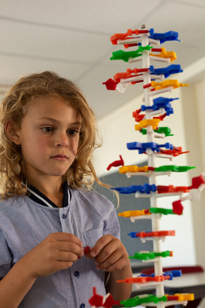 Front view of mixed -race schoolgirl looking at a DNA model in classroom at elementary school