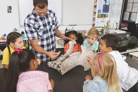 Vista frontal de un maestro explicando y mostrando el esqueleto de un animal a sus alumnos en el aula