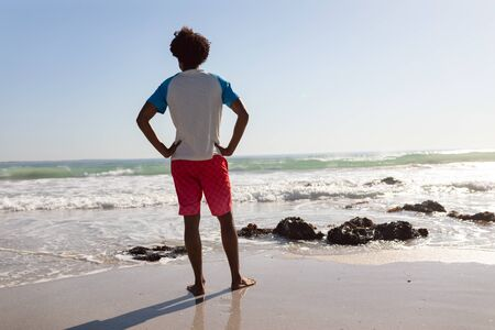 Rear view of African-american man standing with hands on hip at beach on a sunny day