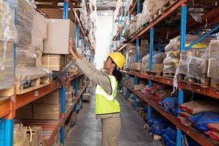 Seitenansicht einer Arbeiterin, die Karton auf einem Regal im Lager aufstellt. Dies ist ein Gütertransport- und Distributionslager. Industrie- und Industriearbeiterkonzept