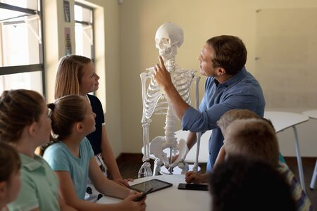 Side view of a Caucasian male teacher using a model of a human skeleton to teach a diverse group of elementary school children during a biology lesson, the children sitting at a table and listening while he talks, pointing at the teeth of the skeleton