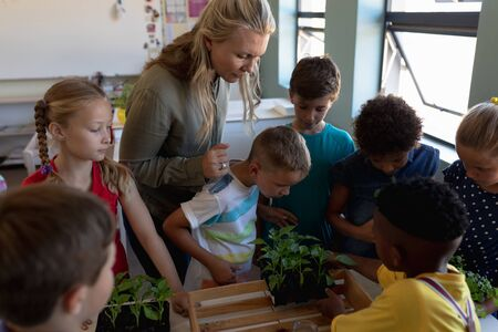 Side view close up of a Caucasian female elementary school teacher with long blonde hair and a diverse group of schoolchildren standing together looking at plants and talking during a nature study lesson in an elementary school classroom