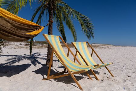 Magnificent view of a beach with two deck chairs, a palm tree and a hammock tied to it