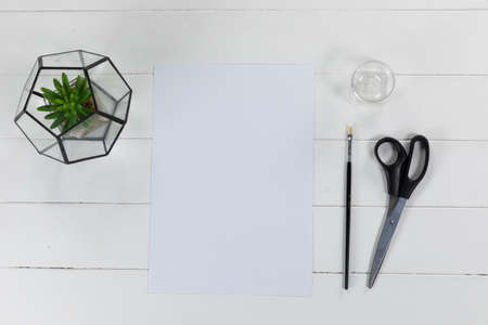 Top view of a white sheet of paper, a brush and scissors with a green plant arranged on a plain white background