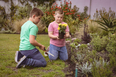 Two caucasian boys with tools gardening together in the garden. childhood and gardening hobby concept