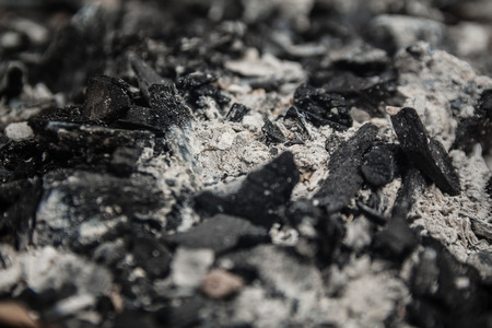 charred: Dry charcoal and Ash - Close Up Selective Focus Stock Photo