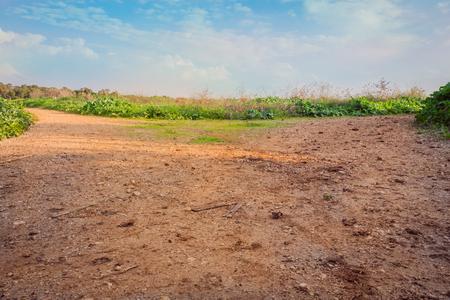 Rural area dirt road